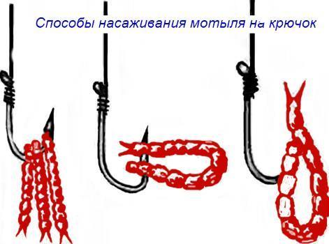 kak-nasadit-motylya-na-kryuchok1