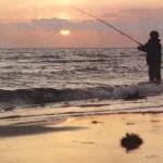 Катушки для рыбалки на море
