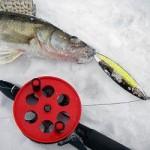 Лучшие блесна для ловли судака зимой