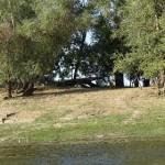 Рыболовная база «Ахтубаза»