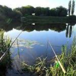 Рыбалка в летний период